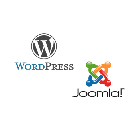 design and development of wordpress websites